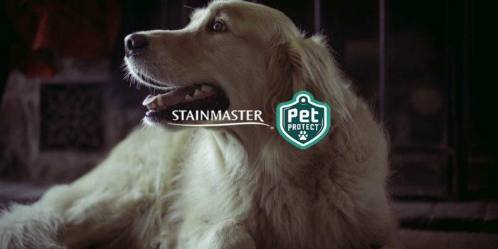 STAINMASTER® PetProtect™